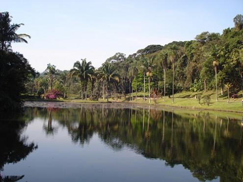 panoramica-jardim-botanico